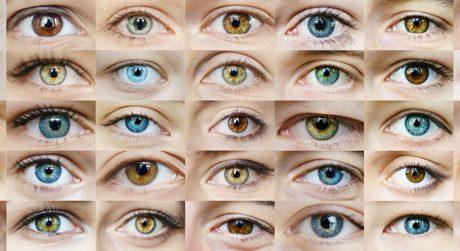 Øjnlægen